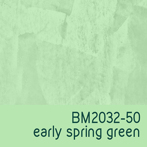 BM2032-50 Early Spring Green