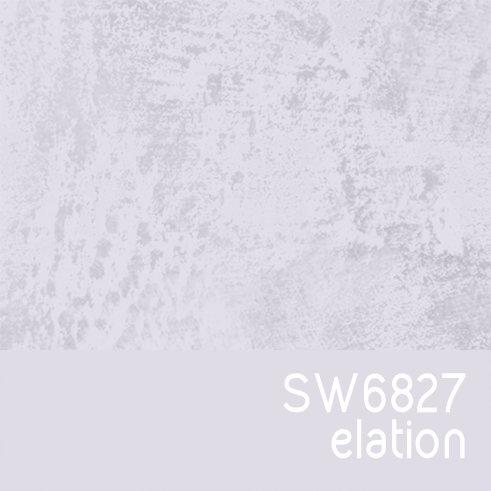 SW6827 Elation