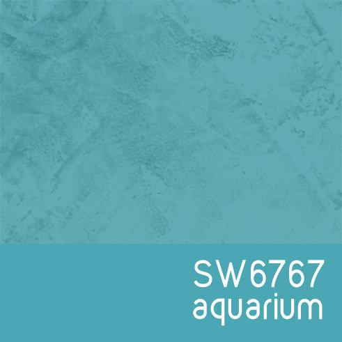SW6767 Aquarium