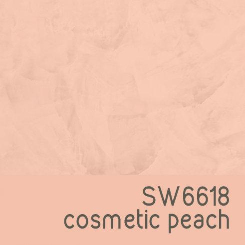 SW6618 Cosmetic Peach