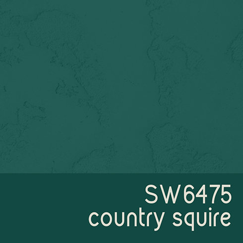 SW6475 Country Squire