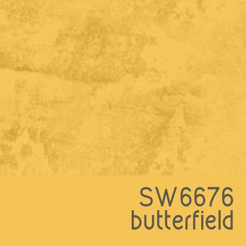 SW6676 Butterfield