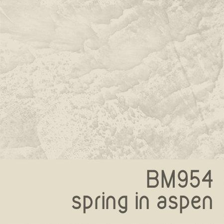 BM954 Spring in Aspen