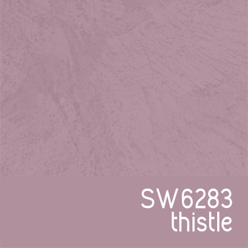 SW6283 Thistle