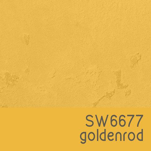 SW6677 Goldenrod
