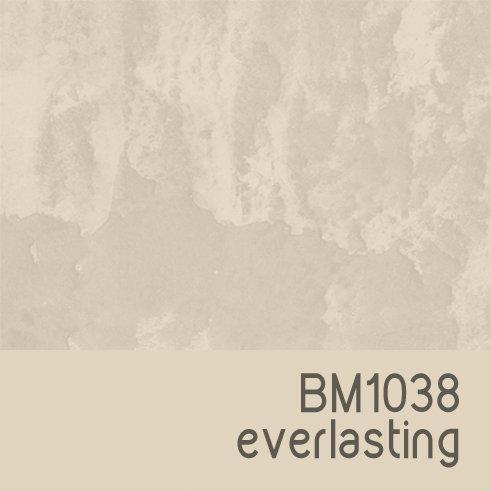 BM1038 Everlasting