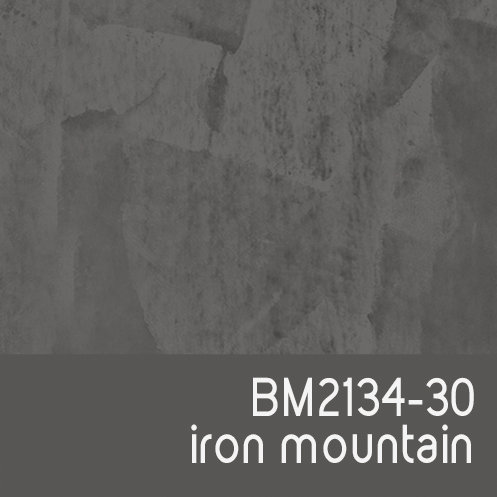 BM2134-30 Iron Mountain