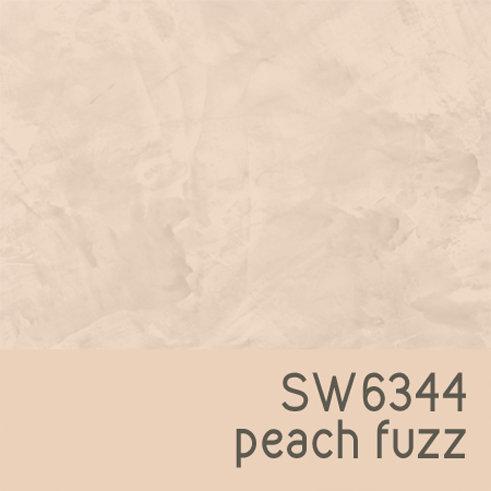 SW6344 Peach Fuzz