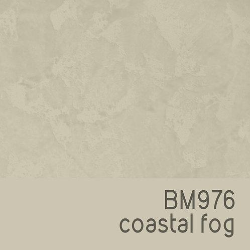 BM976 Coastal Fog