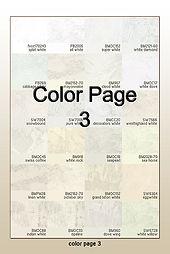 COLOR PAGE 3.jpg