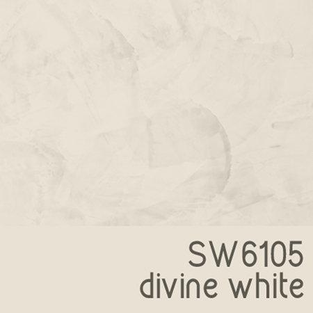 SW6105 Divine White
