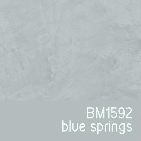 BM1592 Blue Springs