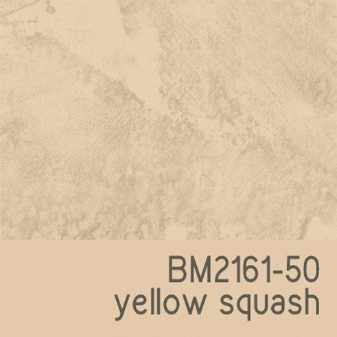 BM2161-50 Yellow Squash