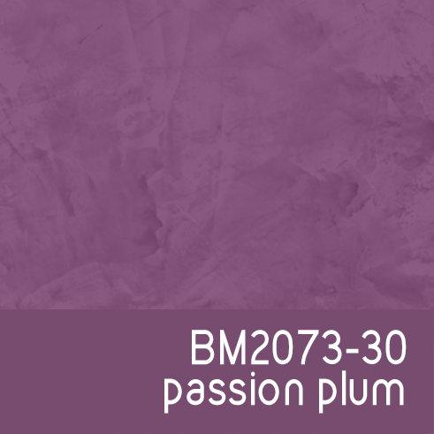 BM2073-30 Passion Plum