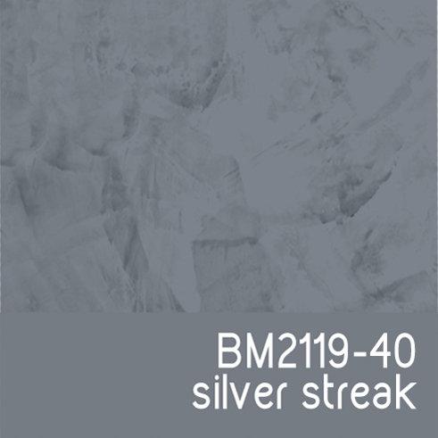 BM2119-40 Silver Streak