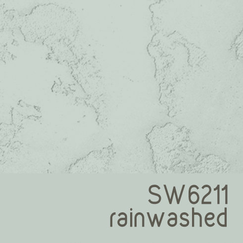 SW6211 Rainwashed