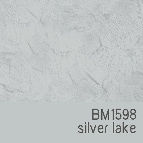 BM1598 Silver Lake