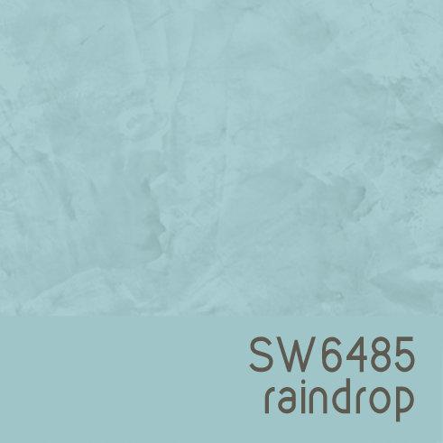 SW6485 Raindrop