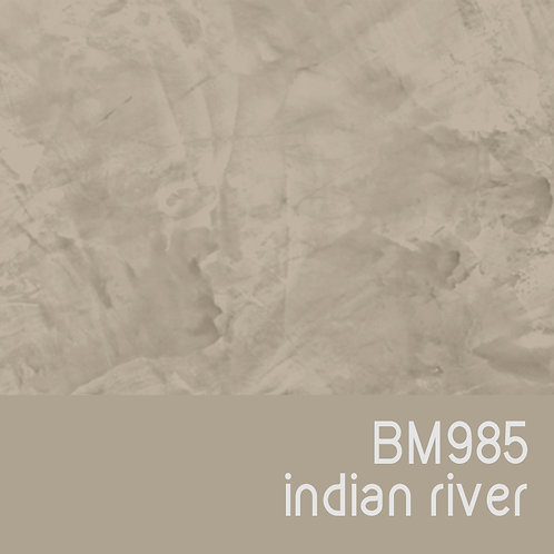 BM985 Indian River