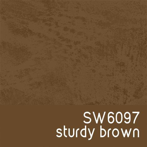 SW6097 Sturdy Brown