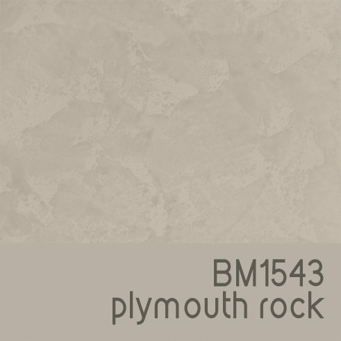 BM1543 Plymouth Rock