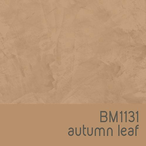 BM1131 Autumn Leaf