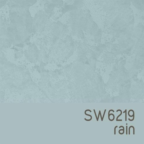SW6219 Rain
