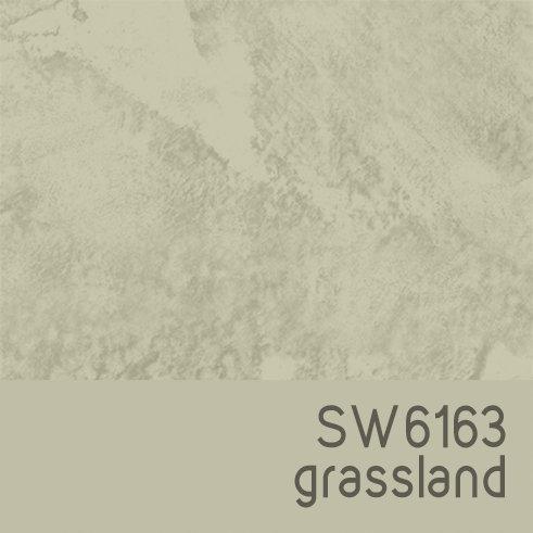 SW6163 Grassland