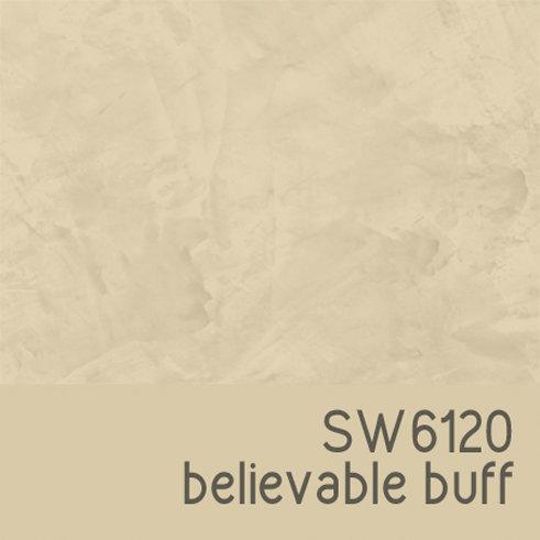 SW6120 Believable Buff