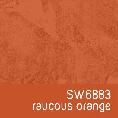 SW6883 Raucous Orange
