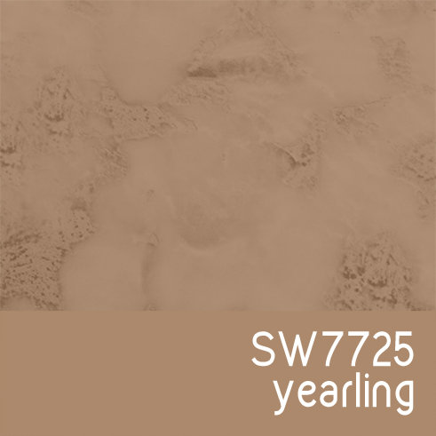 SW7725 Yearling