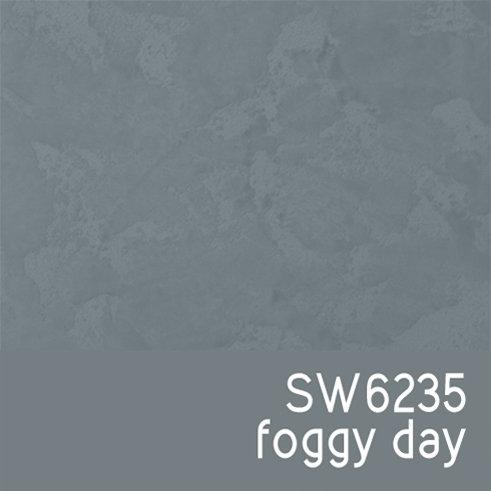 SW6235 Foggy Day