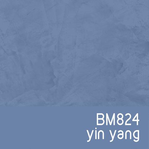 BM824 Yin Yang
