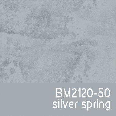 BM2120-50 Silver Spring