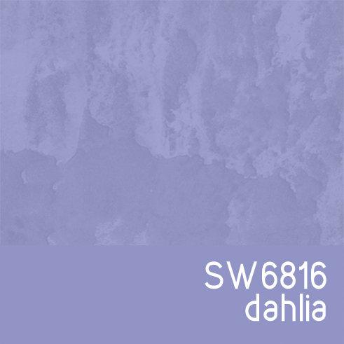 SW6816 Dahlia