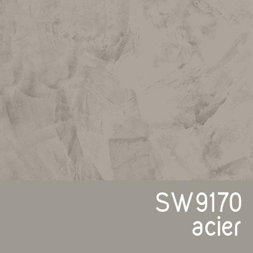 SW9170 Acier