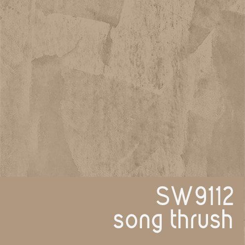 SW9112 Song Thrush
