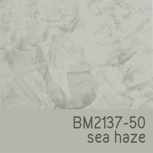 BM2137-50 Sea Haze