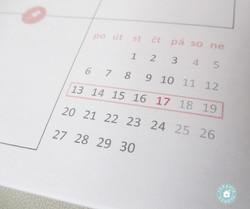 kalendářík
