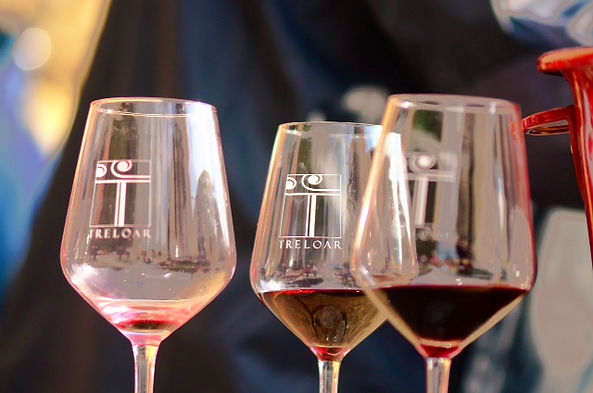 Roussillon, wine, treloar, winery, caveau, perpignan, thuir, vineyard, tours, tastings