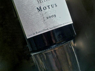 MOTUS wins a great GOLD