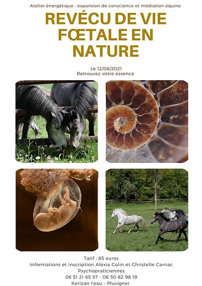 revécu de vie fœtale en nature.png
