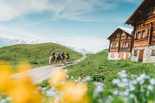 Reiten auf der Alpe Galm