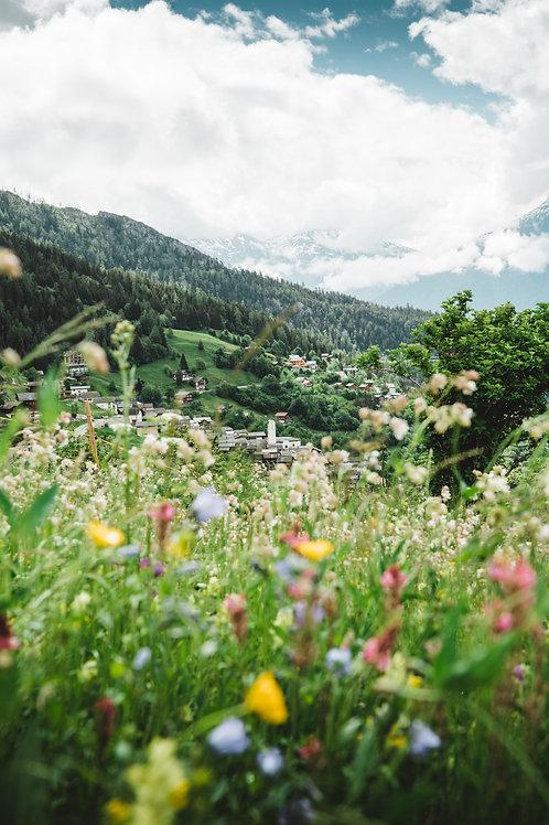 florales Albinen