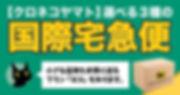 kokusaitakkyubin-1024x538.jpg