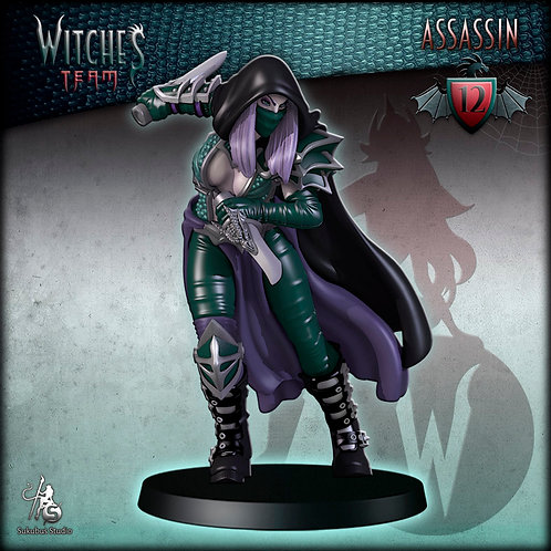Assassin 12 - Witches Team