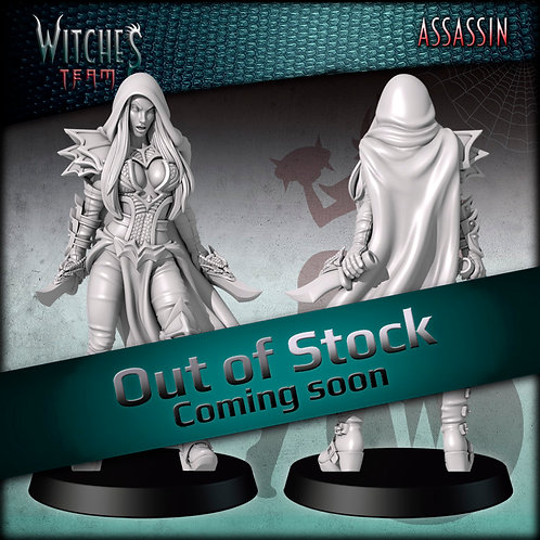 Assassin 13 - Witches Team