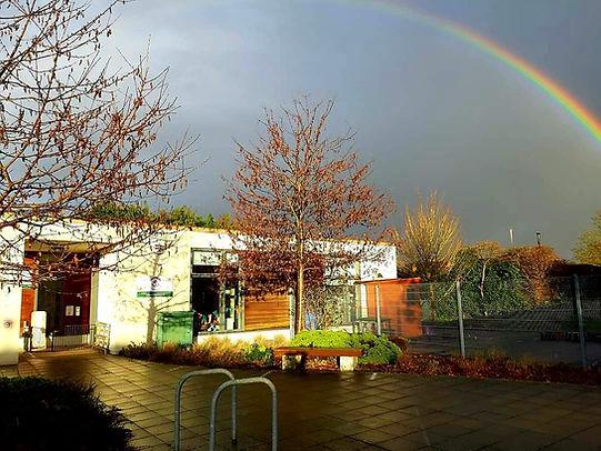 Tadpoles Rainbow.jpg