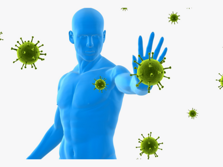TOP TIPS TO HELP SUPPORT YOUR IMMUNE SYSTEM