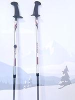 Urban Poles